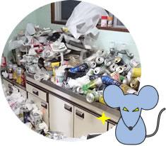ゴミ屋敷衛生面の問題